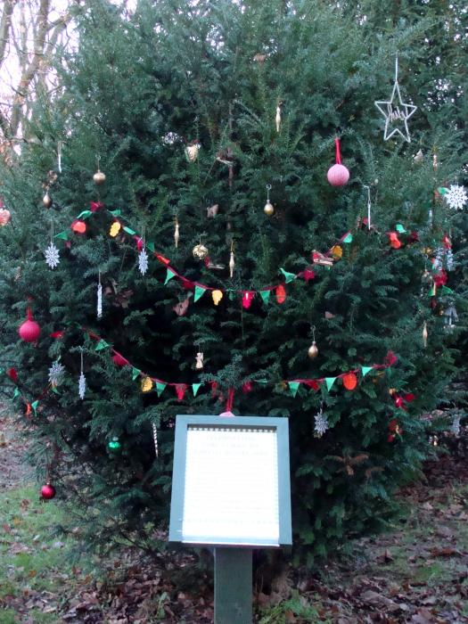 Tarvin online christmas greetings from the woodland m4hsunfo